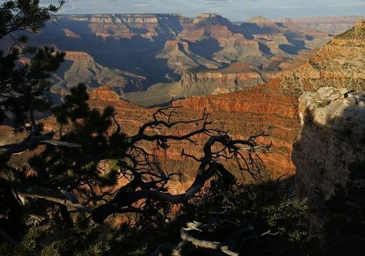 U.S. loses ground as tourist destination new report says